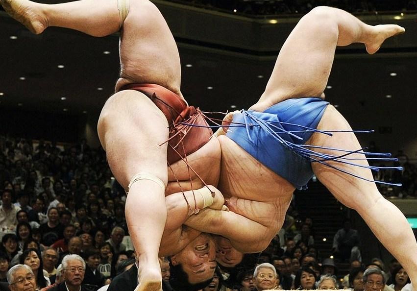 борцы сумо