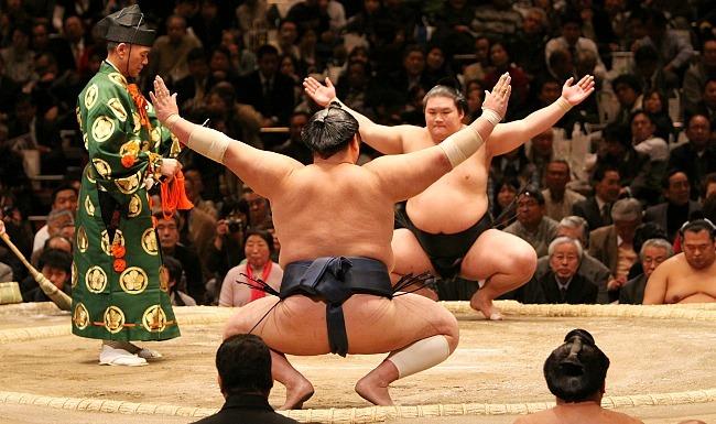 Борцы сумо скачать игру