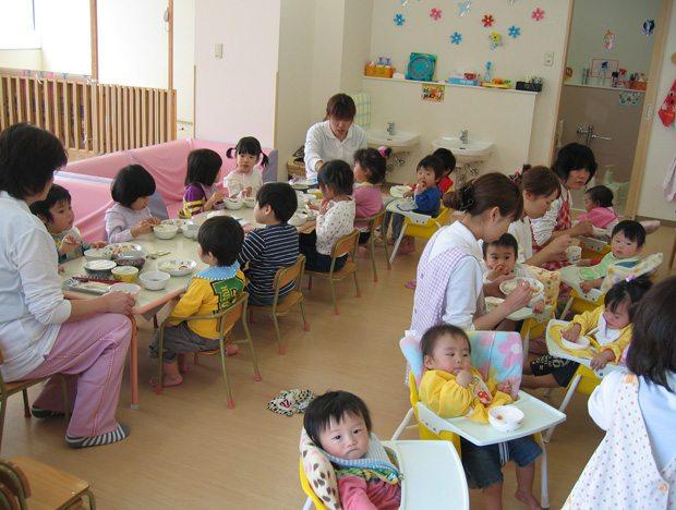 Реферат педагогическое образование в японии 2565