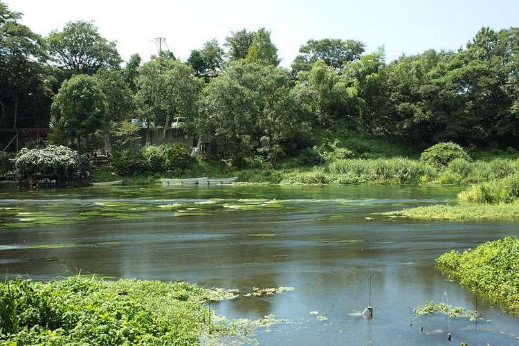 реки Японии