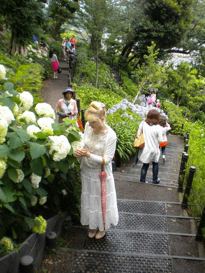семья в Японии
