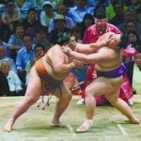 сумоисты